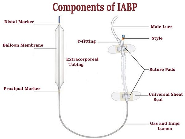 components of Intra-aortic balloon pump